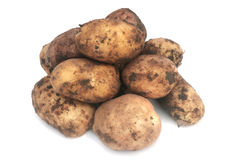 Potatoes. Pile of unwashed potatoes isolated on white Royalty Free Stock Images