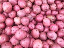 potatoes Photo libre de droits