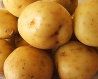 Potatoes. For sale Stock Photos