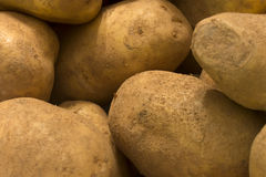 potatoes Photographie stock libre de droits