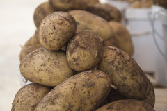 potatoes Photo stock