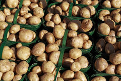 Potatoes. Lined up in baskets ready for sale Stock Images