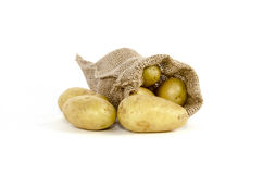potatoes Images stock