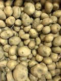 potatoes Image libre de droits