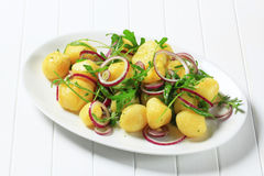 Potatoes with arugula and onion Royalty Free Stock Images
