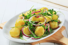 Potatoes with arugula and onion Stock Photos