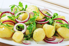 Potatoes with arugula and onion Royalty Free Stock Image