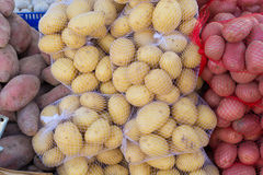Potatoes Stock Image