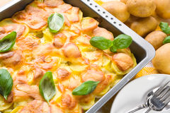Potatoes au gratin Royalty Free Stock Photography