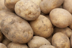 Potatoes background Royalty Free Stock Photos