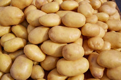 Potatoes background vegetables texture in market Royalty Free Stock Photos