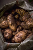 Potatoes in a bag. On the counter in the sale Stock Photography