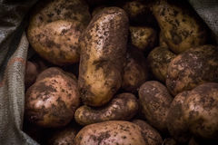 Potatoes in a bag. On the counter in the sale Royalty Free Stock Images