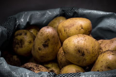 Potatoes in a bag. On the counter in the sale royalty free stock image