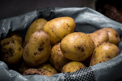 Potatoes in a bag. On the counter in the sale royalty free stock photography