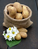 Potatoes in the bag Royalty Free Stock Photos