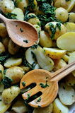 Potatoes baked with garlic and spinach Royalty Free Stock Image