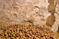 Potatoes in the basement. Potatoes heap in the basement of country house Royalty Free Stock Image