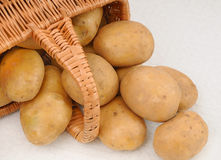 Potatoes in basket Stock Photos