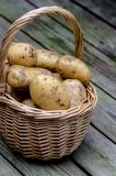 Potatoes in basket Stock Photography