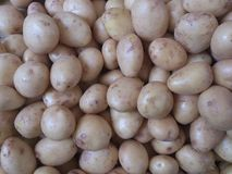 Potatoes at bazaar. Potato texture background at food market in sarkoy, tekirdag, turkey. vegetables for meal. natural, organic products Royalty Free Stock Photos