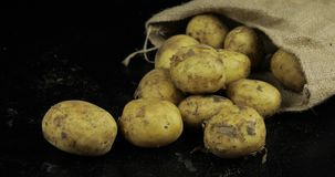 Potatoes on black surfase in a canvas bag. Fresh dirty raw potato in a pile stock images