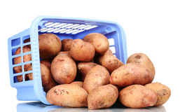 Potatoes in blue plastic box Stock Photos