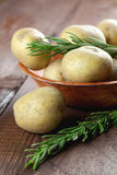 Potatoes in bowl Royalty Free Stock Image