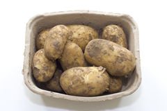 Potatoes in a box. Studio photography. Sourced from the farm Royalty Free Stock Photos