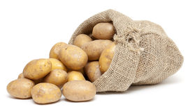 Potatoes in a burlap bag Royalty Free Stock Images