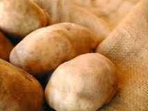 Potatoes on burlap bag Stock Photo
