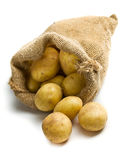 Potatoes in burlap sack Royalty Free Stock Photo