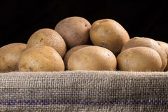 Potatoes in a burlap sack Royalty Free Stock Photography