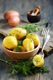 Potatoes with butter and dill. Stock Images