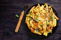 Potatoes with chanterelle roasted Stock Photos