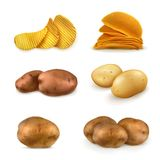 Potatoes and chips vector icons Stock Images