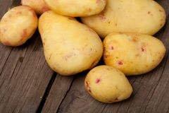 Potatoes close-up Stock Photos