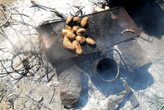 Potatoes on the coals stock photography