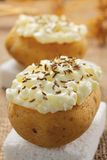 Potatoes with cottage cheese and caraway seeds Stock Images