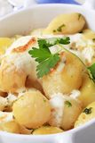 Potatoes and cream Royalty Free Stock Image