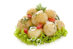 Potatoes with dill Stock Image