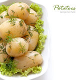 Potatoes with dill. Boiled Potatoes with dill on the green salad leaves Royalty Free Stock Photos