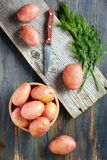 Potatoes, dill and knife. Royalty Free Stock Photography