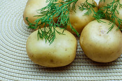 Potatoes and dill on a napkin. Potatoes and dill on a wicker napkin stock image