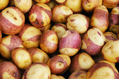 Potatoes at a farmers' market Royalty Free Stock Image