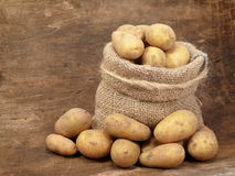 Potatoes from the field stock images