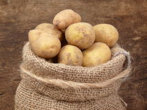 Potatoes from the field Royalty Free Stock Photography