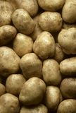 Potatoes filling frame Royalty Free Stock Images