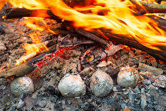 Potatoes in the fire Stock Images