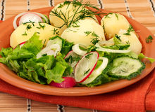 Potatoes with frash salad Royalty Free Stock Photos